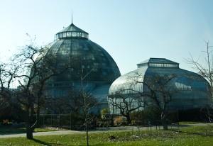 Bell Isle Aquarium