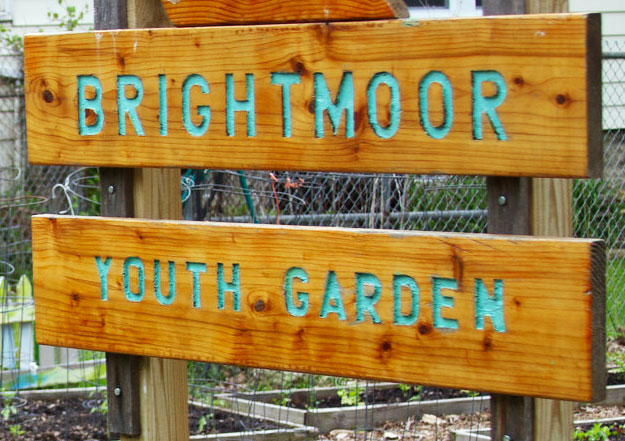 brightmoor-montage-2_4