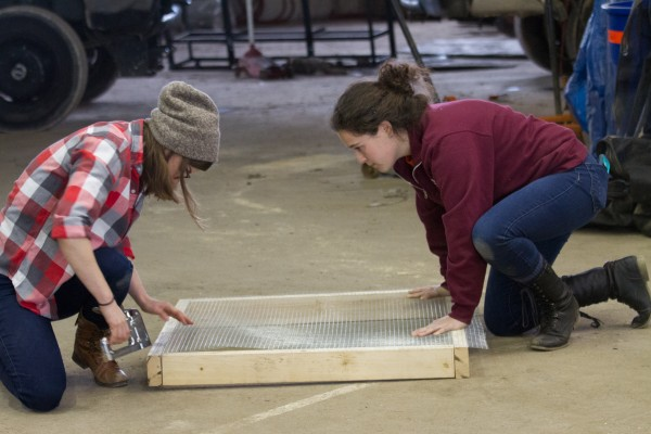 Constructing the compost bin at Great Lakes Landscape Design: Carly Sugar and Sam Katz pair up on building a section
